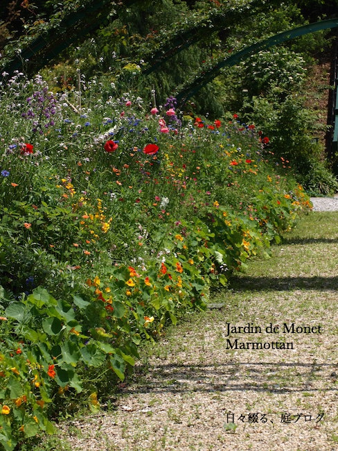 f:id:m-garden-life:20170516171628j:plain