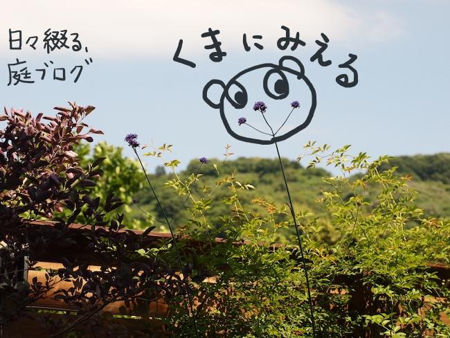 f:id:m-garden-life:20170526154606j:plain