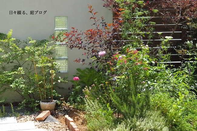 f:id:m-garden-life:20170613165123j:plain