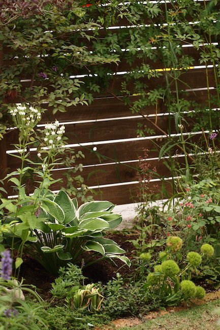 f:id:m-garden-life:20170623162727j:plain
