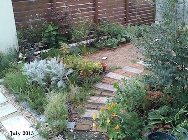f:id:m-garden-life:20170624145613j:plain
