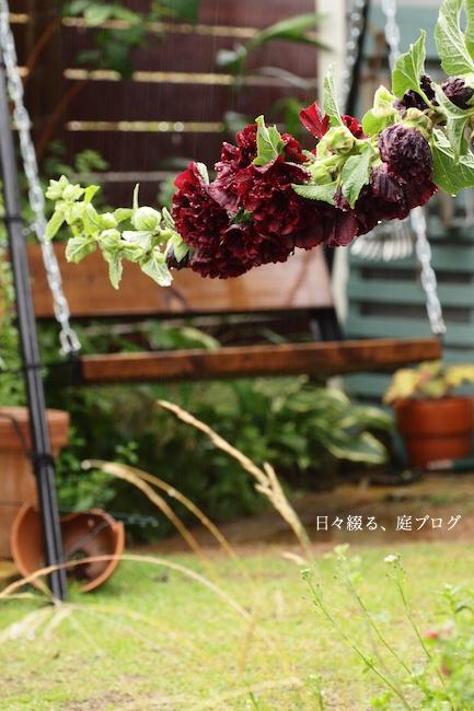 f:id:m-garden-life:20170628093826j:plain