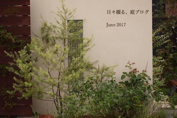 f:id:m-garden-life:20170701131254j:plain