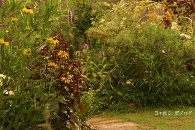f:id:m-garden-life:20170706081047j:plain