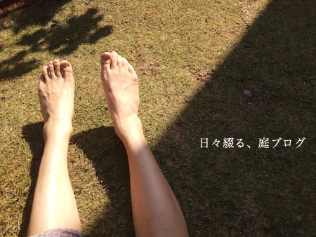 f:id:m-garden-life:20170926162040j:plain