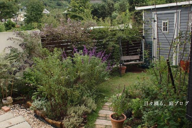 f:id:m-garden-life:20170928155345j:plain