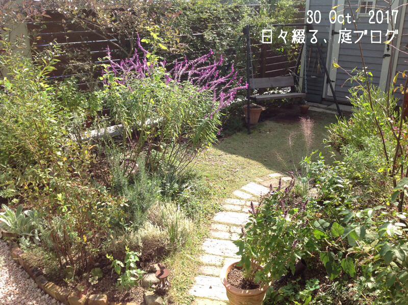 f:id:m-garden-life:20171030115050j:plain