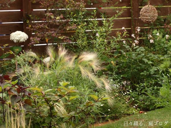 f:id:m-garden-life:20171119160838j:plain