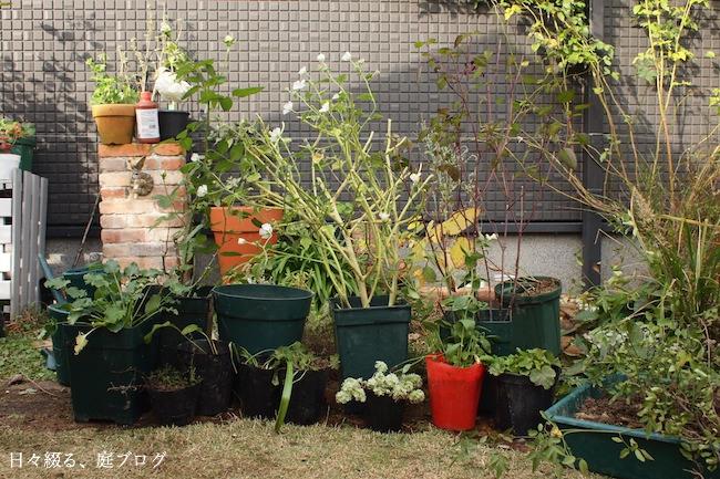 f:id:m-garden-life:20171125115409j:plain