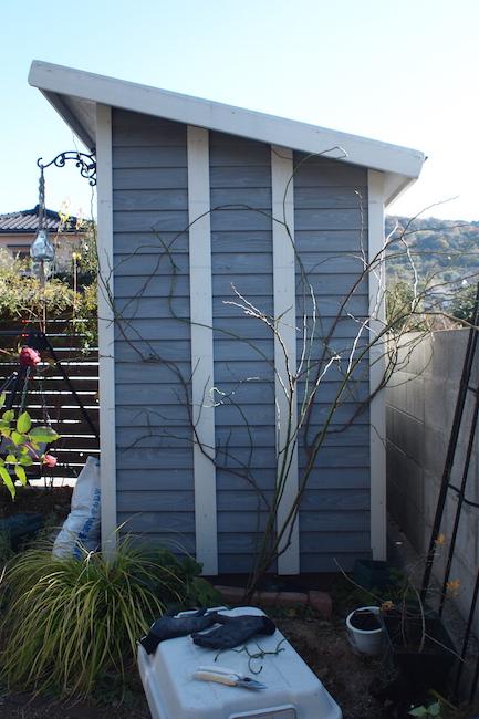 f:id:m-garden-life:20171215113931j:plain