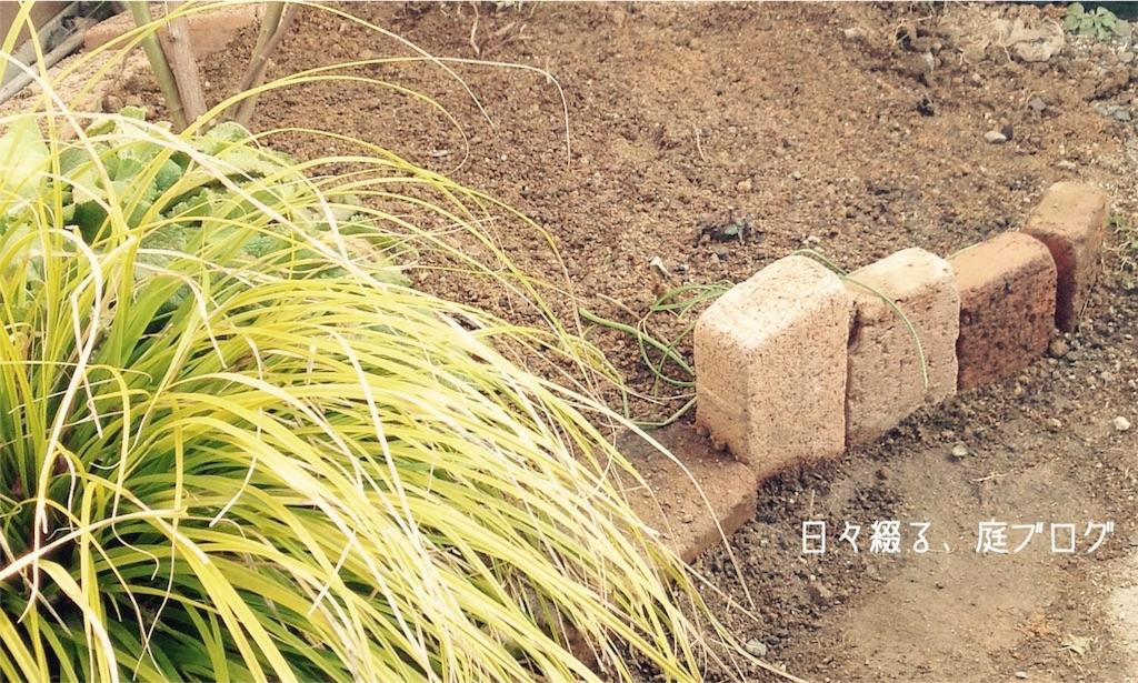 f:id:m-garden-life:20180208160644j:image