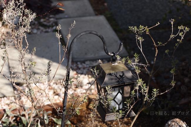 f:id:m-garden-life:20180217123234j:plain