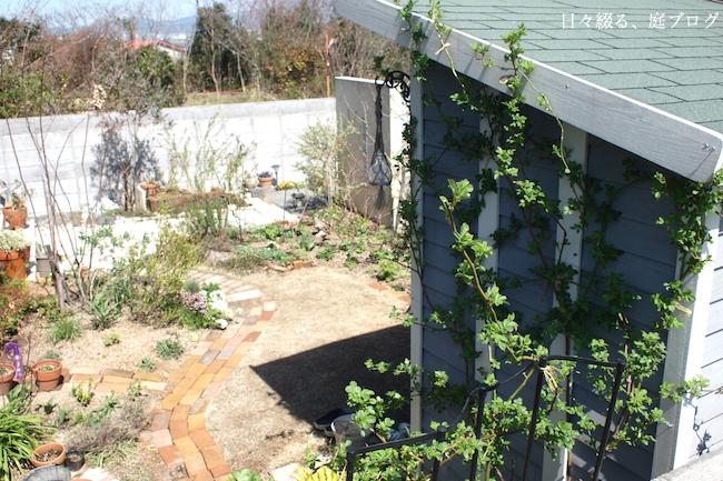 f:id:m-garden-life:20180317145333j:plain