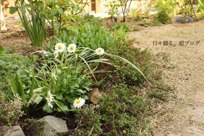 f:id:m-garden-life:20180401150129j:plain