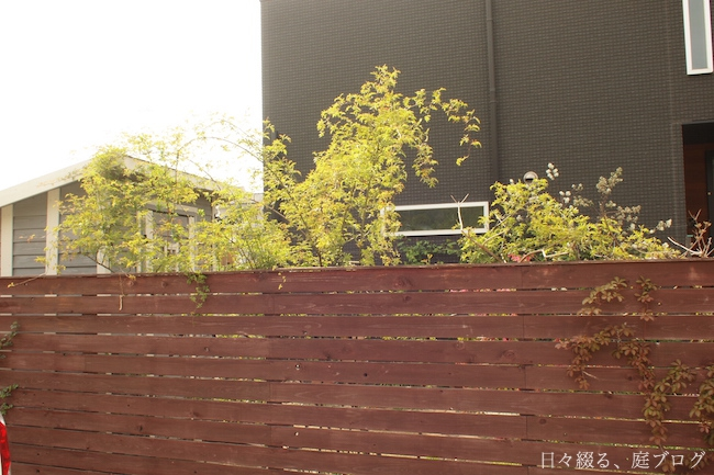 f:id:m-garden-life:20180405172856j:plain