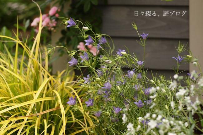 f:id:m-garden-life:20180504184323j:plain