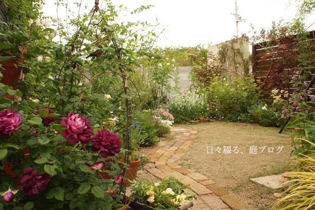 f:id:m-garden-life:20180505174929j:plain