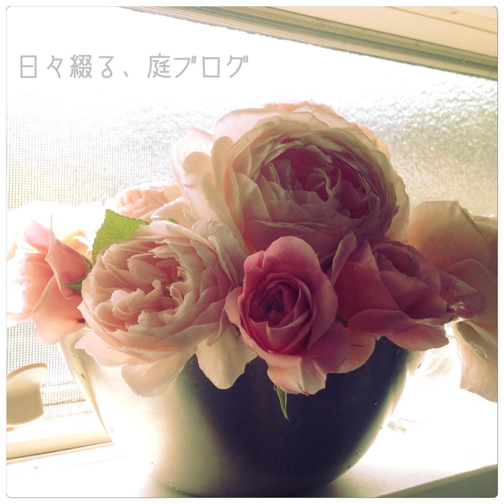 f:id:m-garden-life:20180515210509j:plain