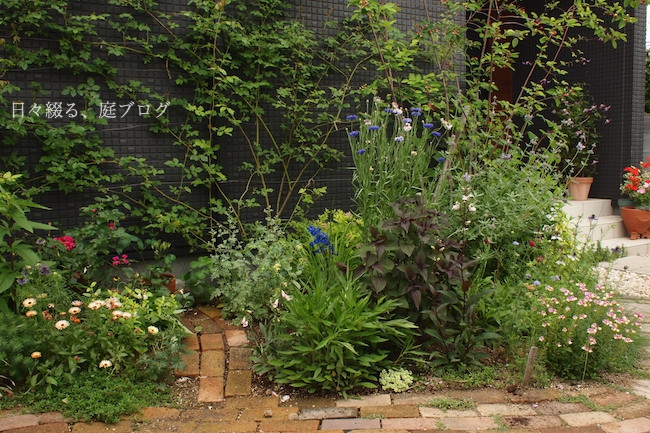 f:id:m-garden-life:20180518141301j:plain