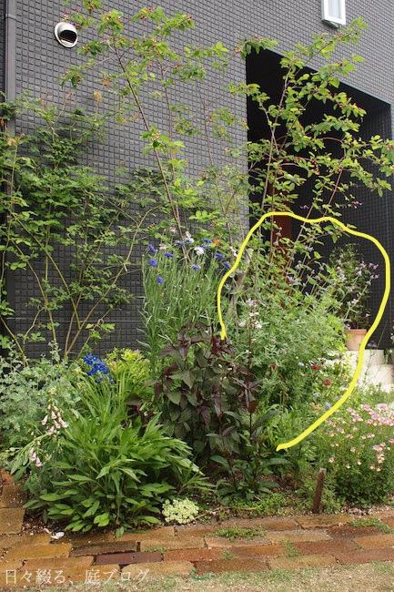 f:id:m-garden-life:20180528155830j:plain