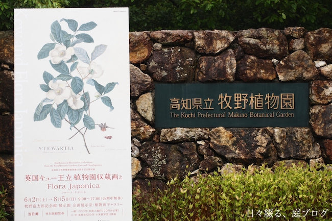 f:id:m-garden-life:20180606173315j:plain