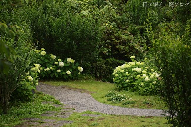 f:id:m-garden-life:20180606173752j:plain