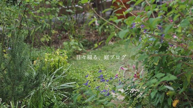 f:id:m-garden-life:20181019153911j:plain