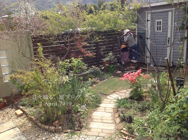 f:id:m-garden-life:20190402190545j:plain