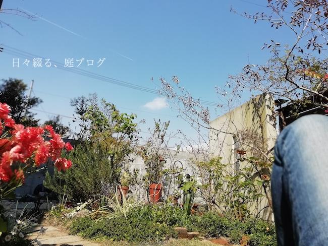 f:id:m-garden-life:20190402192306j:plain
