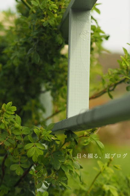 f:id:m-garden-life:20190409164549j:plain