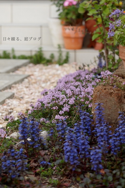 f:id:m-garden-life:20190417180519j:plain