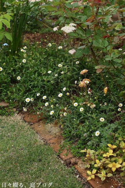 f:id:m-garden-life:20190417180656j:plain