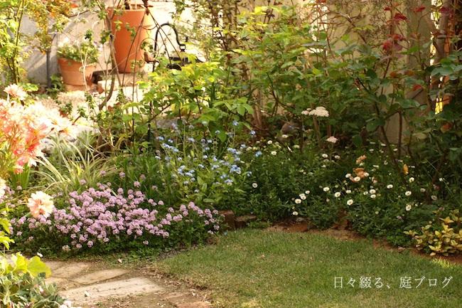 f:id:m-garden-life:20190419125148j:plain