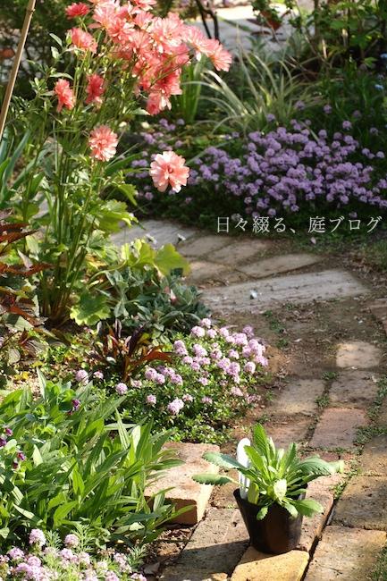 f:id:m-garden-life:20190419130549j:plain