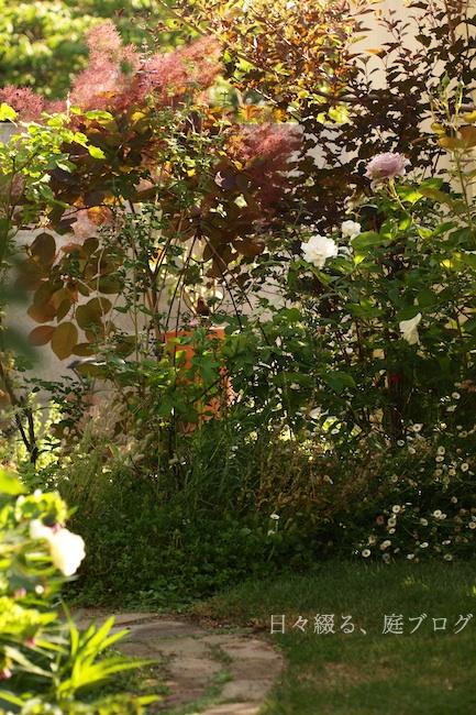 f:id:m-garden-life:20190519083608j:plain