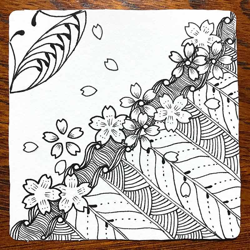 zentangle(ゼンタングル)と桜
