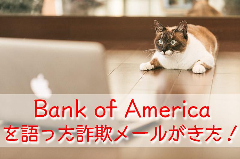 Bank Of Americaから迷惑メールが来た