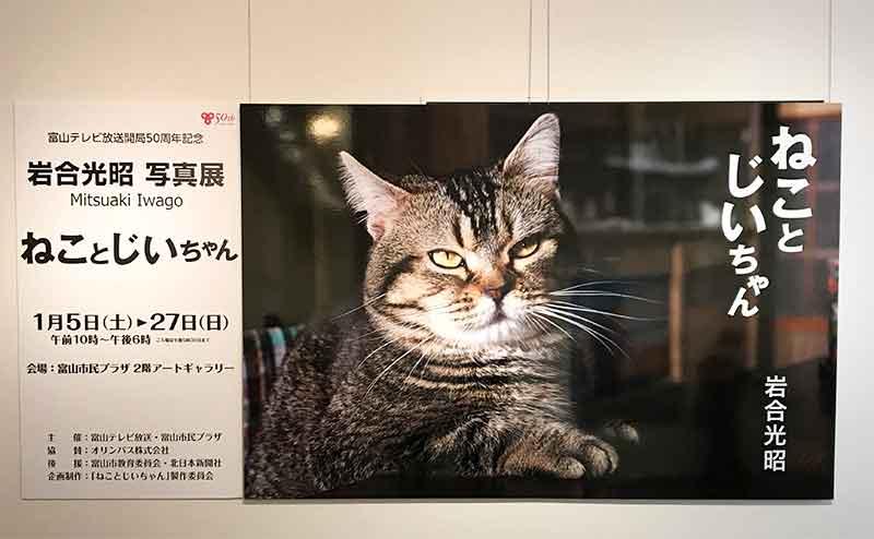 動物写真家・岩合光昭さんの写真展『ねことじいちゃん』