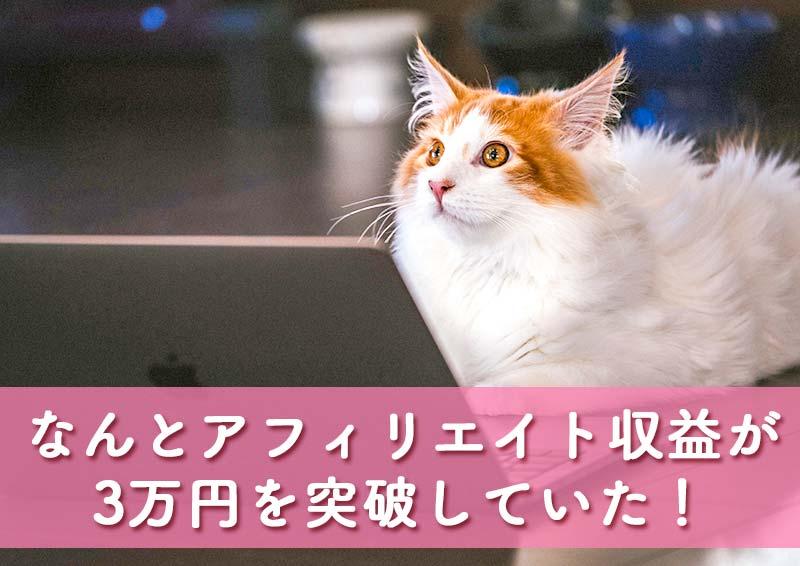 アフィリエイト報酬が3万円を超えた