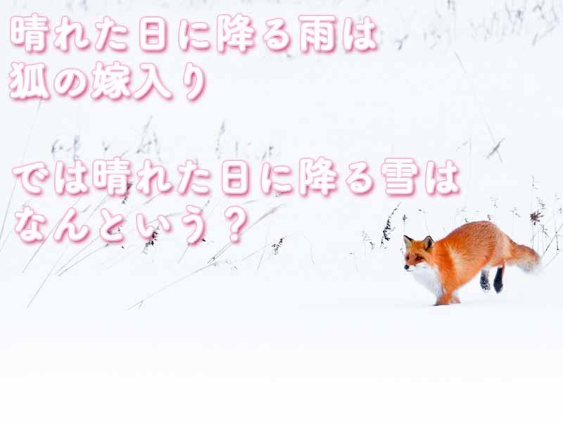 晴れた日に降る雨は狐の嫁入り。では晴れた日に降る雪はなんと言う?