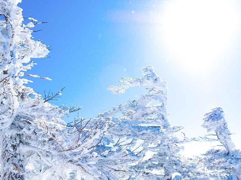 晴れた日に冬雪は「風花」
