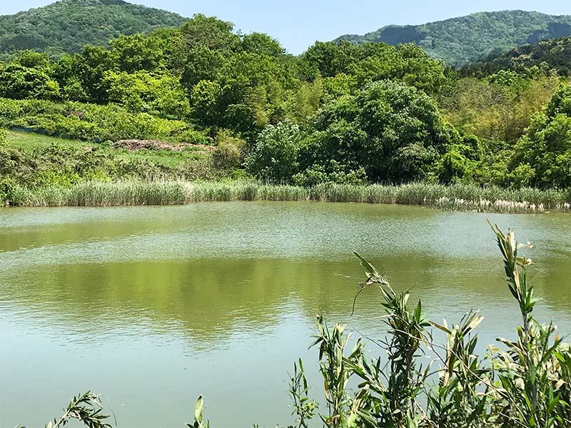 奈良大神神社摂社・桧原神社