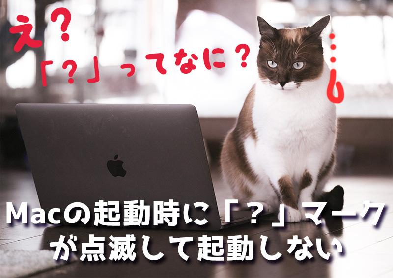 突然Macの起動時に「?」マークのフォルダアイコンが点滅