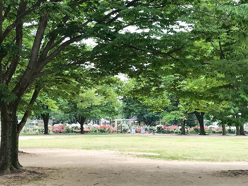 金沢バラ園・金沢南総合運動公園