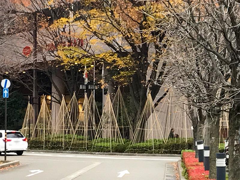 金沢駅もてなしドームと鼓門と雪吊り