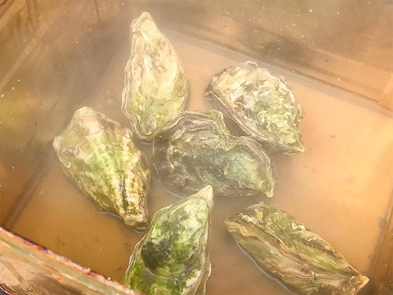 能登牡蠣(かき)まつりキャンペーンin野々市