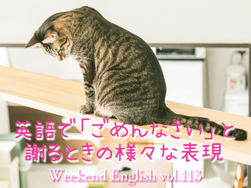 週末英語(weekend english)英語で「ごめんなさい」と謝るときの様々な表現