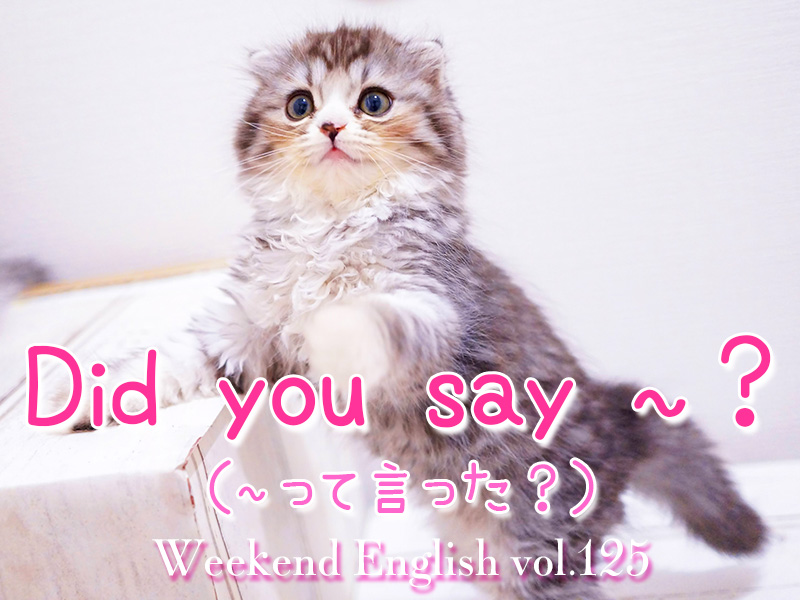 週末英語(weekend english)did you say
