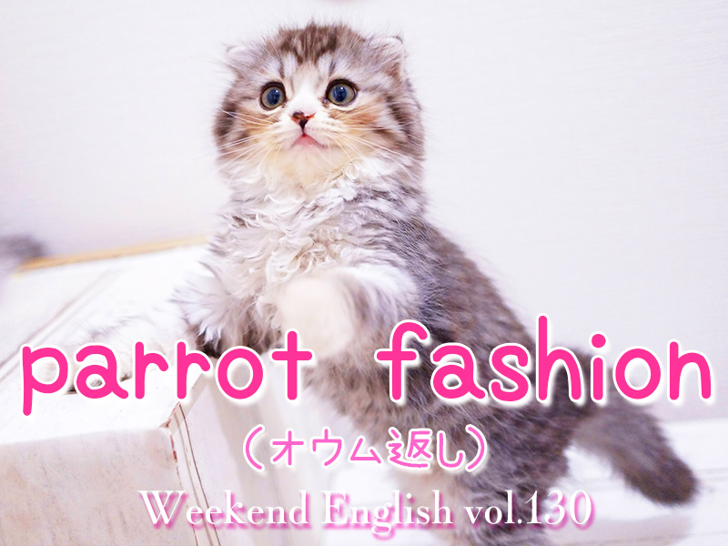 週末英語(weekend english)