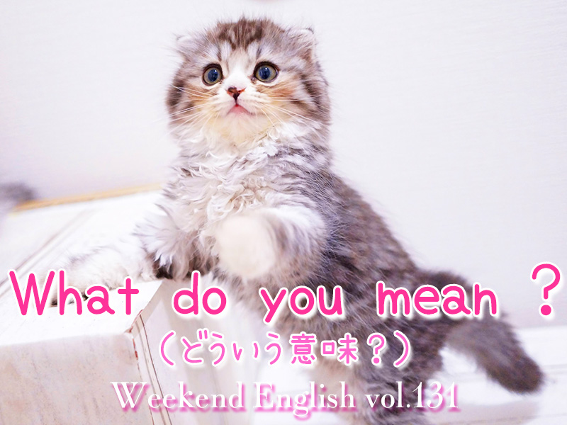 週末英語(weekend english)「What do you mean ?(どういう意味)」